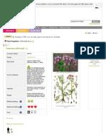Www Pfaf Org User Plant Aspx LatinName Valeriana Officinalis