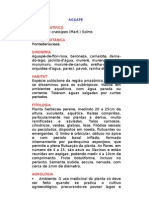 112864310-Aguape-Eichhornia-crassipes-Mart-Solms-Ervas-Medicinais-–-Ficha-Completa-Ilustrada-com-Receitas