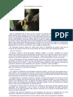 Formación del carácter.pdf