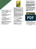 Una Introduccion a Los Principios y Metodologia de La Agricultura Bio-dinamica