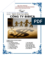 Phan Tich Tai Chinh Cong Ty Bibica