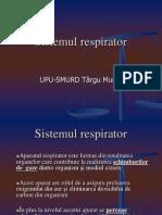 2 -Sistemul Respirator