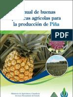 Manual de BPA cultivo de piña
