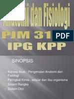 SinopsisAnatomiFisiologiIPGKPP