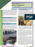 Bulletin Des Activites de l'Initiative P5, No 01/2011 (Mars à Juin 2011)