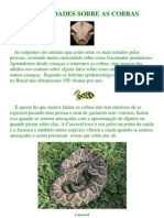 Curiosidades Sobre as Cobras