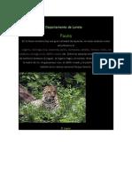 Flora y Fauna Del Departamento de Loreto