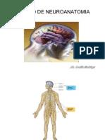 Repaso de Neuroanatomia
