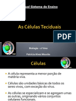 Aula 2 - As Células Teciduais.ppt