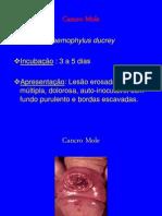 1155_doencas