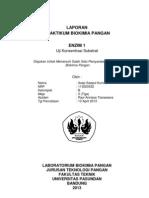 Konsentrasi Substrat Revisi