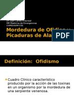 Mordedura de Ofidios y Picadura de Alacrán