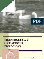 bioenergetica y oxidaciones biológicas ciclo de krebs