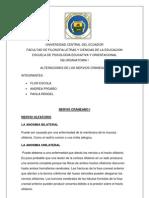 ALTERACIONES DE LOS NERVIOS CRANEALES escrito.docx