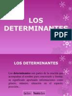 Determinantes (Expresion)