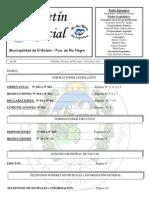 Boletin Oficial Abril 2013 Nº 29