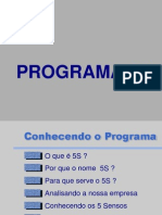 apresentação 5s