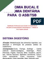 ANATOMIA BUCAL E DENTÁRIA.ppt