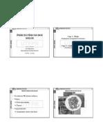Indices Fisicos - IZZO - UTFPR