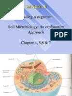 1ESC 590.Soil Biota.chromista