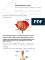 Guía de estudio Reproducción de las plantas