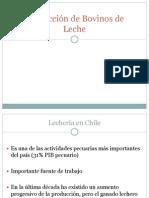 Produccion de Bovinos de Leche