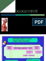 fisiologi-otot