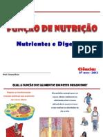 NURIENTES E DIGESTÃO 8ª ANO 2013