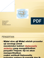 Tes Widal New