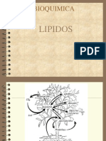Lipido Cuaderno Suncp 100715203707 Phpapp02