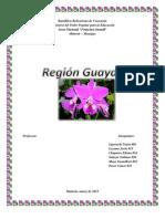 Región Guayana.docx