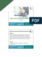 Biogascoursemanual_IRRI_Mexico.pdf