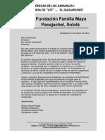 ATI Jaguarundí, Auxiliado, Rescatado y Rehabilitado por MAYAN FAMILIES, PAZ ANIMAL GT y TAKALIK ABAJ.