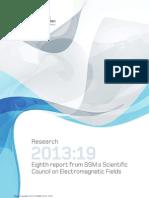 SSM Rapport 2013 19