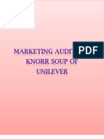 Marketing Audit for Knorr Soup of Unilever