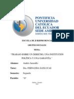 derecho, garantia e institucion aje.docx