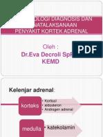 Peny Adrenal