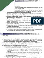 Desarrollo Intelectual y Cognitivo 2 6