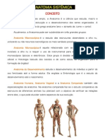 Anatomia Fundamentos