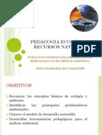 Pedagogia Ecologica II Recursos Naturales