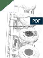 136616771 Algumas Consideracoes Sobre a Articulacao Na Flauta Transversal 1