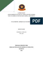 LK Kebidanan RSSA