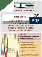 Articulos de Aduana (1)