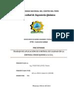 Avance Del Informe