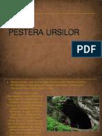 Pestera Ursilor