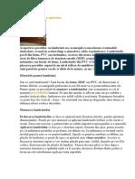 Design Interior cu Lambriuri.doc