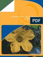 Descentralizacion Fiscal Somotillo