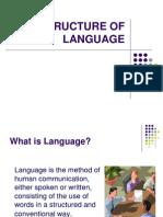 The Structure of Language_morfosintaks_1