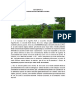 Actividad n 1 Agroecologia
