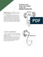 HydronephrosisSp.pdf